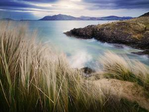 Ireland, Co.Donegal, Fanad, Ballymastoker bay and seagrass by Shaun Egan
