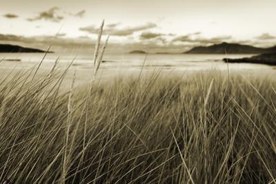 Ireland, Co.Donegal, Fanad, Ballymastoker bay by Shaun Egan