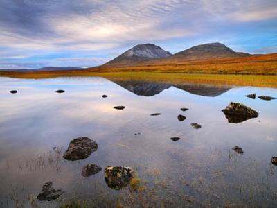 Ireland, Co.Donegal, Mount Errigal  reflected in lake by Shaun Egan
