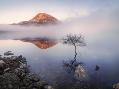 Ireland, Co.Donegal, Mount Errigal reflected in Lough Dunlewey by Shaun Egan