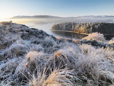 Ireland, Co.Donegal, Mulroy bay, winter landscape by Shaun Egan