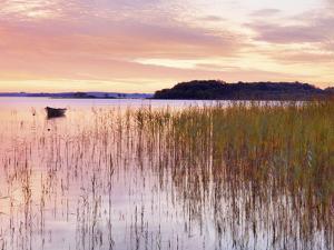 Ireland, Co.Mayo, Lough Conn at sunrise by Shaun Egan