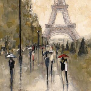 Wandering in Paris by Shawn Mackey