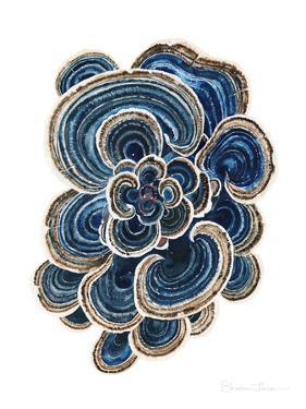 Blue Trametes Mushroom by Shealeen Louise