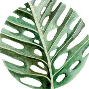Circular Monstera Leaf by Shealeen Louise