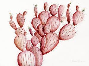Pink Cacti by Shealeen Louise