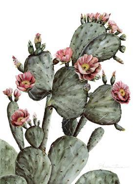 Prickly Pear by Shealeen Louise