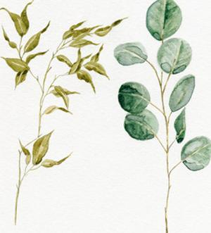 Two Eucalyptus Pieces by Shealeen Louise