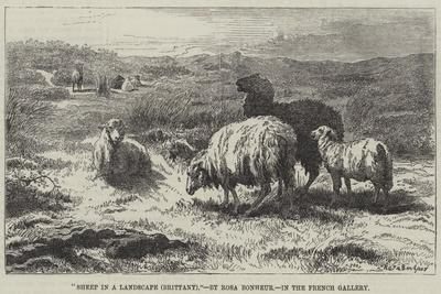 https://imgc.allpostersimages.com/img/posters/sheep-in-a-landscape-brittany_u-L-PUSMLH0.jpg?p=0