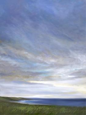 Coastal Clouds Diptych I by Sheila Finch