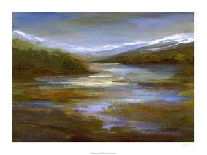 Mountain Stream by Sheila Finch