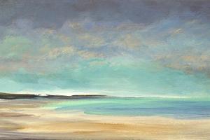 Shoreline IV by Sheila Finch