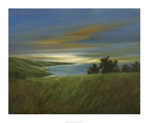 Sky at Dusk by Sheila Finch