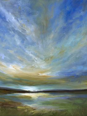 Updraft by Sheila Finch