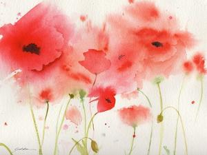 Red Poppies by Sheila Golden