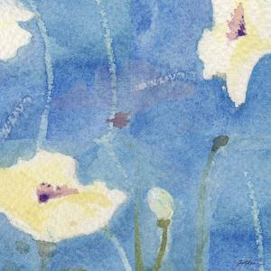 White Poppy by Sheila Golden