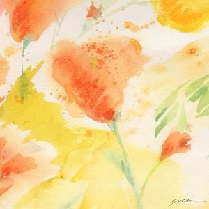 Windblown Poppies #3 by Sheila Golden
