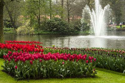 A Manicured Flower Garden of Tulips with a Lake and Water Fountain by Sheila Haddad