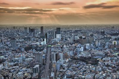 A view from the Mori Building of sunset over Tokyo by Sheila Haddad