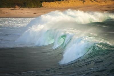 Carmel Beach, California, Breaking Wave by Sheila Haddad