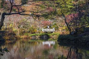 Couple walking across a bridge over a pond in the Narita Temple Garden by Sheila Haddad