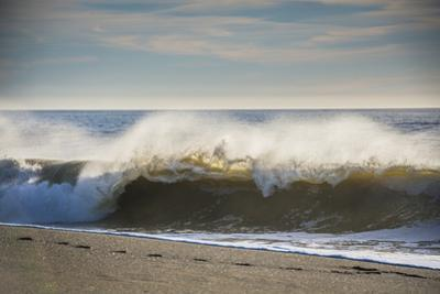 Curling wave on Pacific Ocean beach in evening light by Sheila Haddad