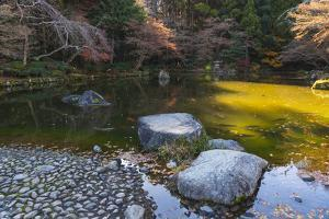Rock path in the lake filled with koi fish in the Narita Temple Gardens by Sheila Haddad