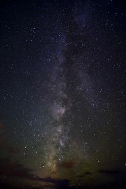 Stars at Night, Milky Way Vertical by Sheila Haddad