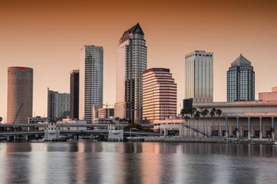 Tampa skyline at sunset with many pinks in the picture by Sheila Haddad