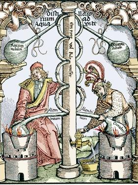 Distillation, 16th Century Woodcut by Sheila Terry