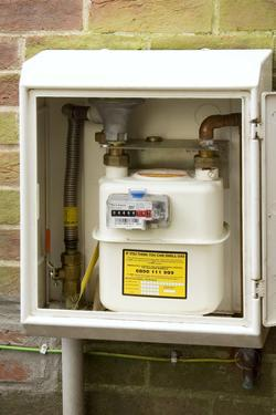 Domestic Gas Meter by Sheila Terry