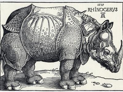Durer's Rhinoceros, 1515
