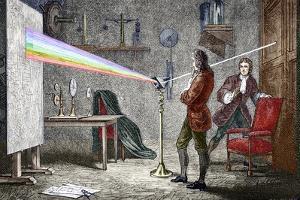 Newton's Optics by Sheila Terry