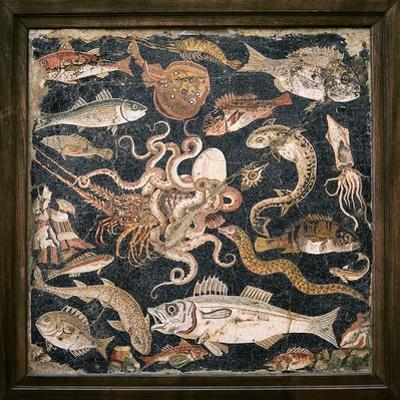 Roman Seafood Mosaic by Sheila Terry