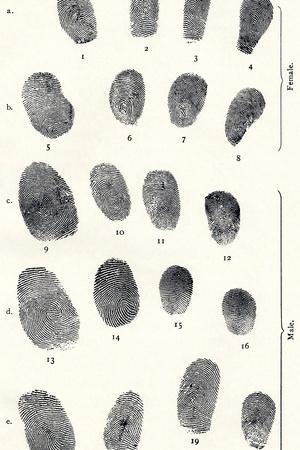 Sets of Fingerprints