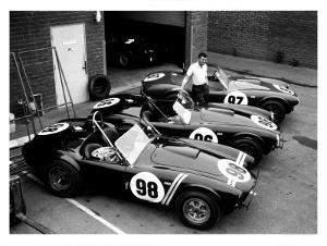 Shelby Roadsters