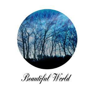 Beautiful World by Sheldon Lewis