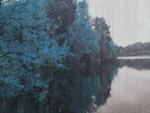 Blue Bayou by Sheldon Lewis