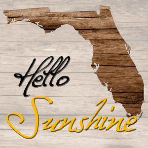 Florida Map 2 by Sheldon Lewis