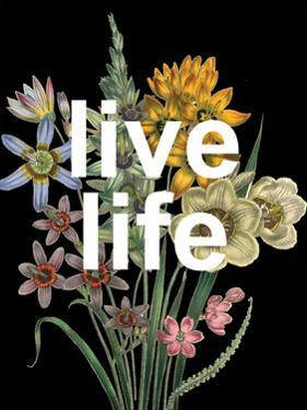 Live Life by Sheldon Lewis