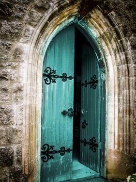 Vintage Door by Sheldon Lewis