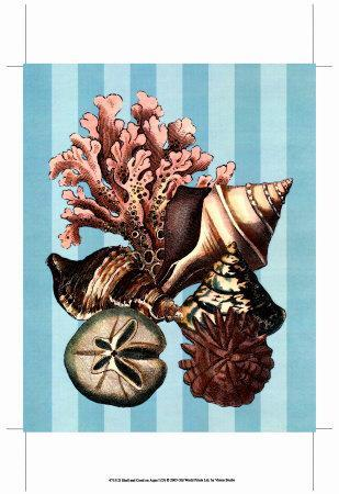 https://imgc.allpostersimages.com/img/posters/shell-and-coral-on-aqua-i_u-L-EZNQS0.jpg?p=0