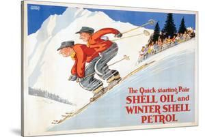 Shell Oil and Winter Petrol