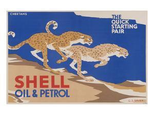 Shell Oil & Petrol Cheetahs