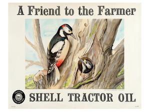 Shell Tractor Oil - Farmer