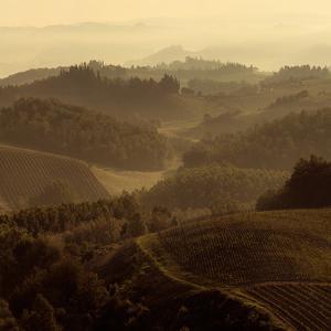Sunrise over Tuscany II by Shelley Lake