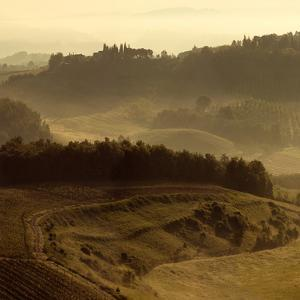 Sunrise over Tuscany III by Shelley Lake