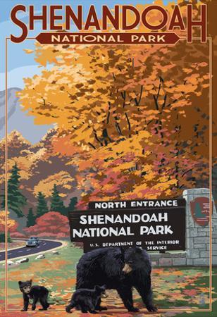 Shenandoah National Park, Virginia - Black Bear and Cubs at Entrance