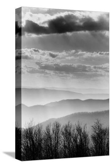 Shenandoah National Park, Virginia--Stretched Canvas Print