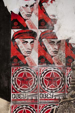 Shepard Fairey Posters, Copenhagen, Denmark